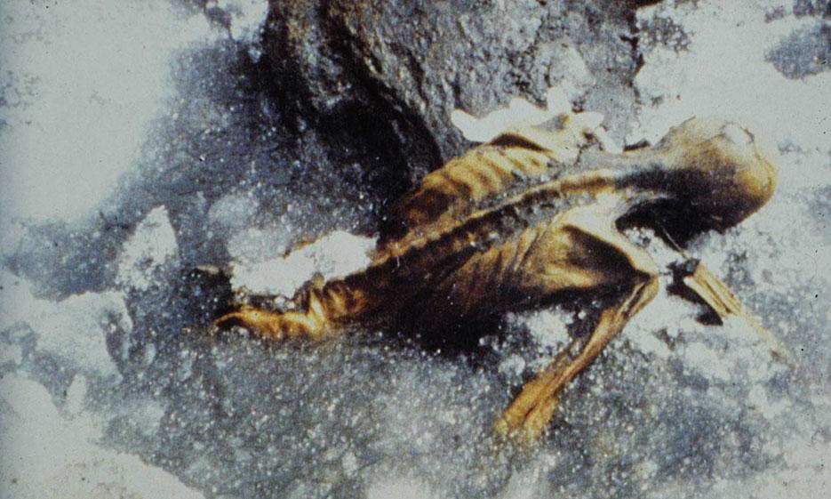 Ötzi und das Klima