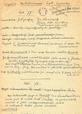 """Notizen von Karl Felix Wolff zur """"italienischen Altvölkerkunde"""""""