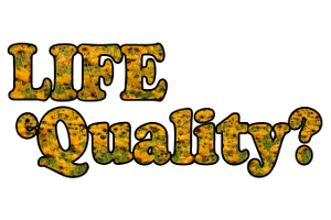 Logo LIFE eQuality?