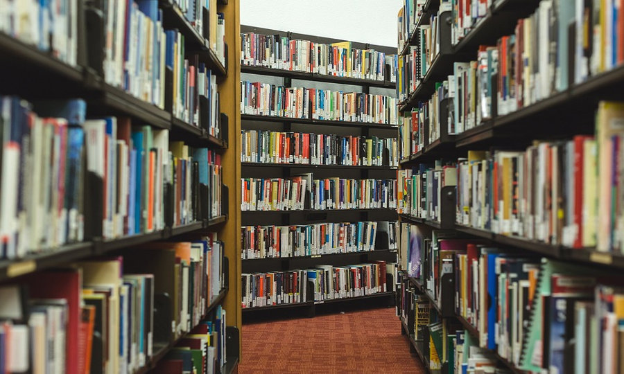 Bibliothek mit Büchern (Bild: https://pixabay.com/de/b%C3%BCcher-forschung-bibliothek-regale-2562331/)