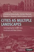 Cover Cities as Multiple Landscapes