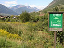 Reduction of the invasive neophytes Solidago canadensis and S. gigantea in Vinschgau Valley, South Tyrol