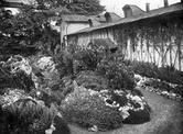 Alpenpflanzenanlage