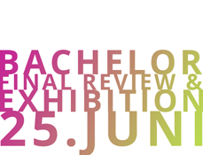 Bachelor 2014 Final Review & Exhibition 25.06.2014