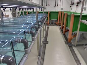 Aquarienraum FG Wanzenboeck-ILIM-2015