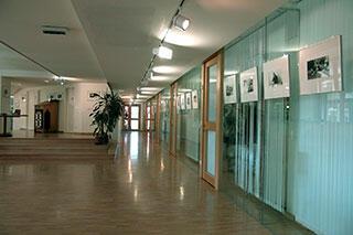 Exhibition room. Foto: Monika K. Zanolin