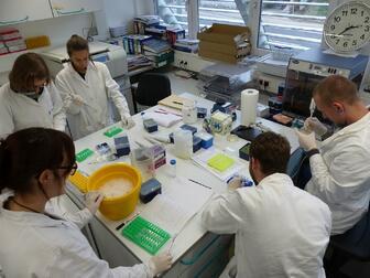 Laboranalysen Hydrobotanikkurs 2015