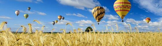 heißluftballon_weizenfeld