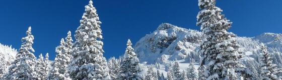panorama-winter_1280x365