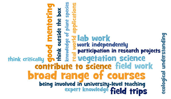Answers to the question: Looking back on your studies, what aspects were most positive and helpful for your career?