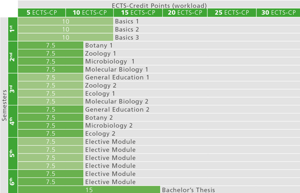 Recommended course sequence for Bachelor Programme Biology