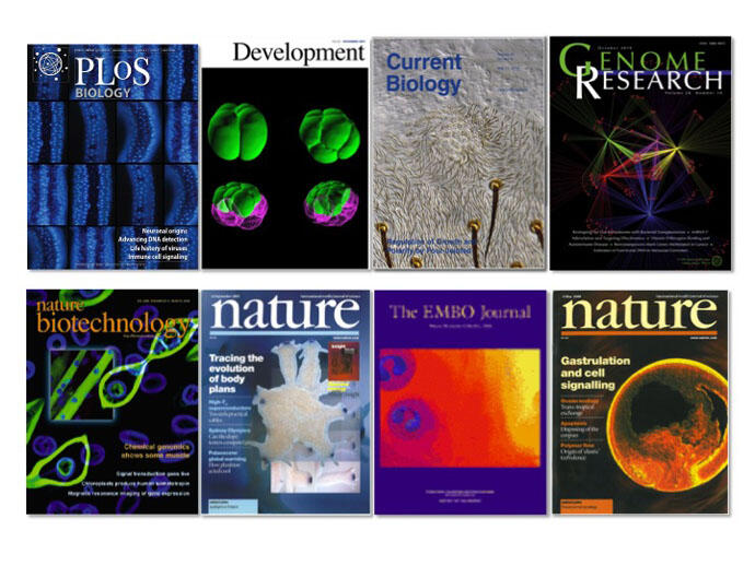 Cover pages of journals