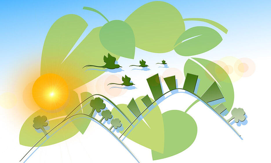meet-an-ecology_935x561