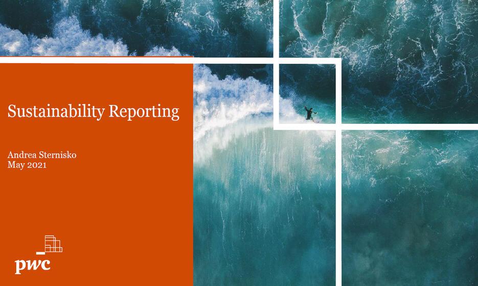 BAFIT Online-Panel Nachhaltigkeitsberichterstattung