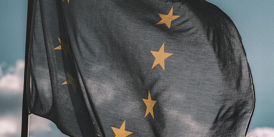 7. Europa Fahne