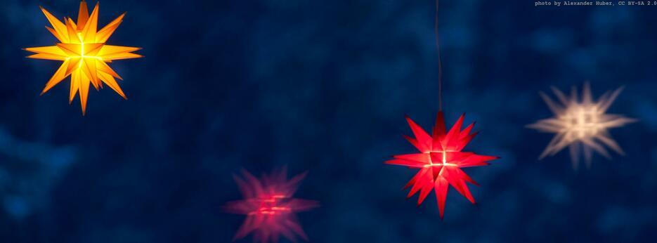 weihnachtssterne-min_935x561px