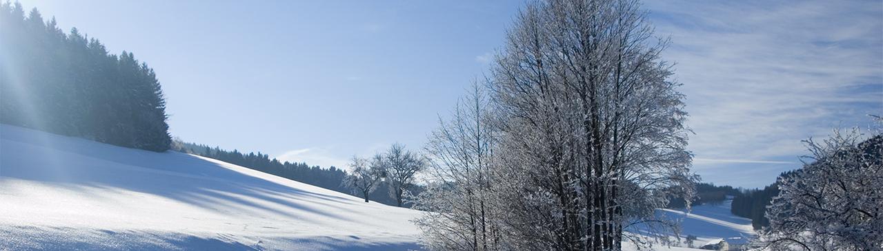 panorama-winterlandschaft_1280x365.jpg